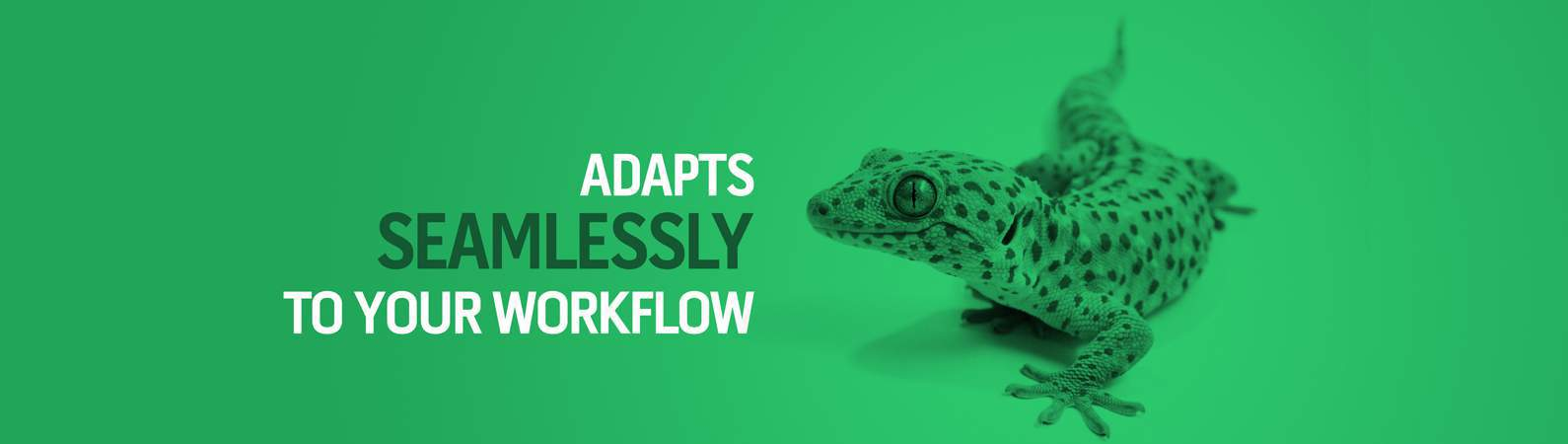 Adapts seamlessly to your workflow
